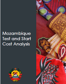 Mozambique Test and Start Cost Analysis