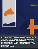 Estimating the Economic Impact of COVID-19 on Gold Export, Cotton Production, and Food Security in Burkina Faso