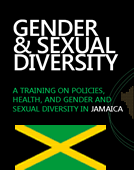 Gender & Sexual Diversity: A Training on Policies, Health, and Gender and Sexual Diversity (Country Adaptations)